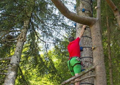 La Forêt des Dodes activité loisirs Grand Bornand