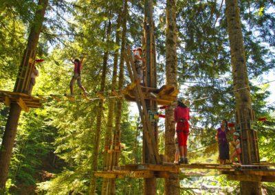 Jeux dans les arbres activité sportive grand bornand